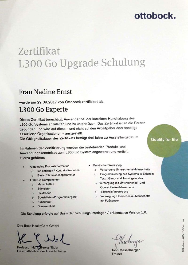 zertifikat-nadine-ernst-l300-go-1